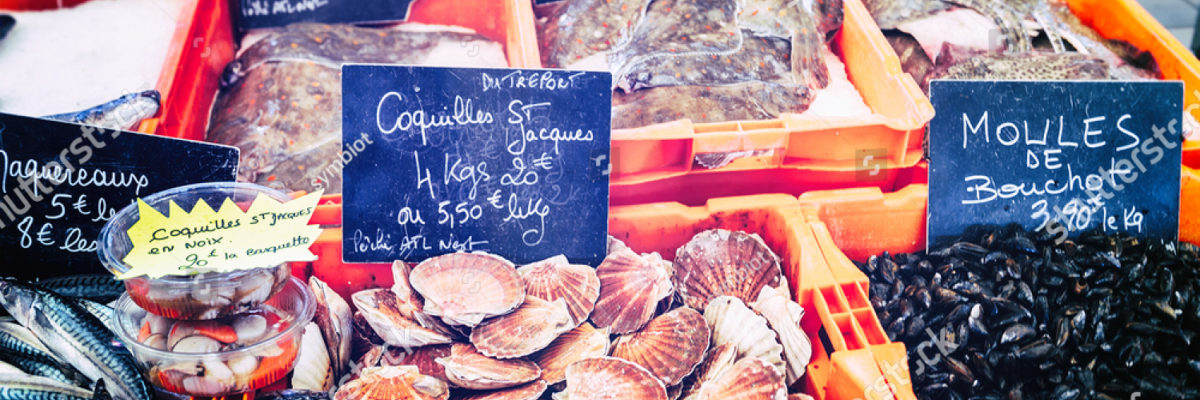 stock-photo-fresh-scallops-and-mussels-at-fish-market-193424411