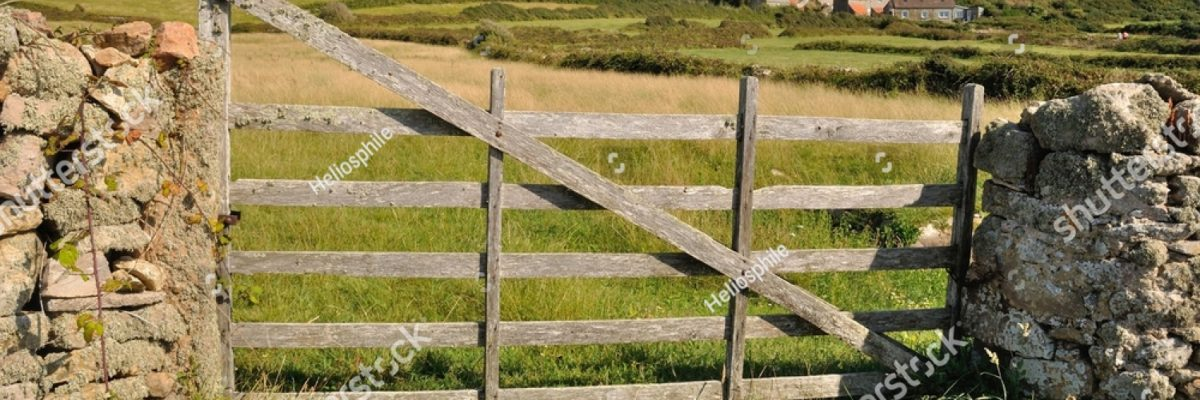 stock-photo-wooden-gate-in-field-324683273